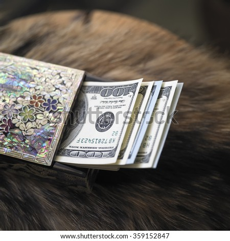Bundle of dollars in a colorful gift box laid on a fur garment, closeup shot, concept of wealth - stock photo