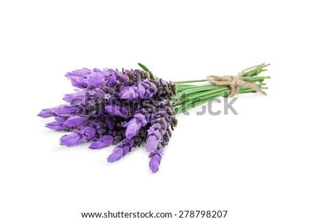 bundle of lavender flowers isolated on white background - stock photo