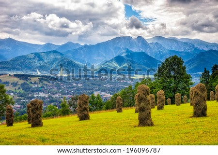 Bundles of hay in the field after harvest in the Polish mountains.  - stock photo