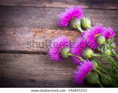 Burdock on the wooden background - stock photo