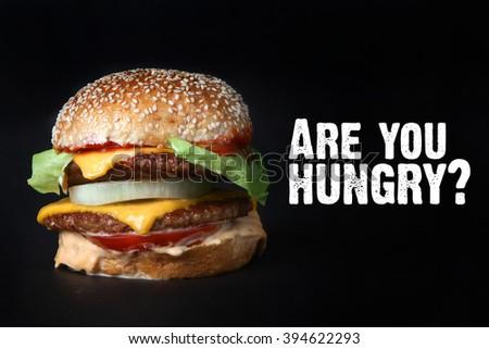 burger beef double  American food fast food junk food hamburger  - stock photo