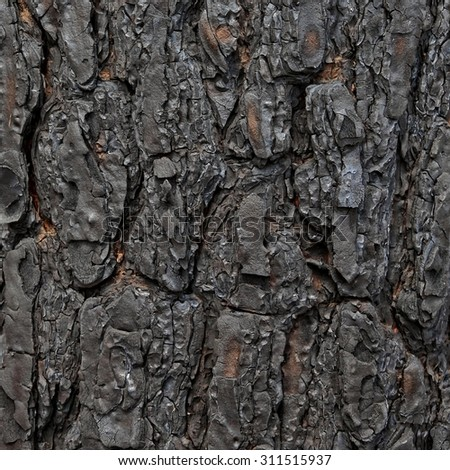 Burned down wood (wooden) background. Forest after the fire - stock photo