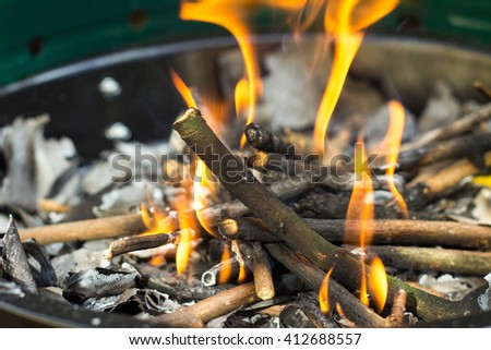 Burning branches in barbecue. Natural process of fire burning wood with orange saturated flames detail closeup view - stock photo