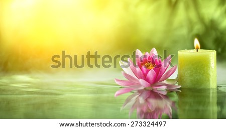 Burning candle and water lily in water. - stock photo