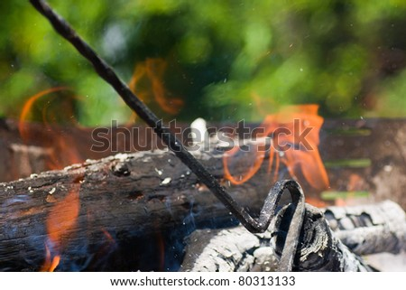 Burning logs for barbecue. - stock photo