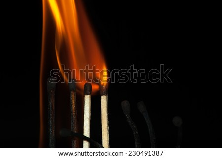 Burning match on a black background. Build a fire. - stock photo