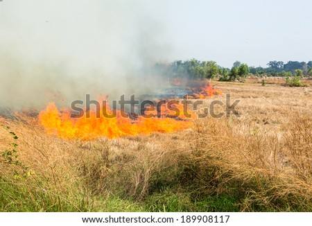 Burning of rice stubble burning straw in rice farmers in Thailand. - stock photo