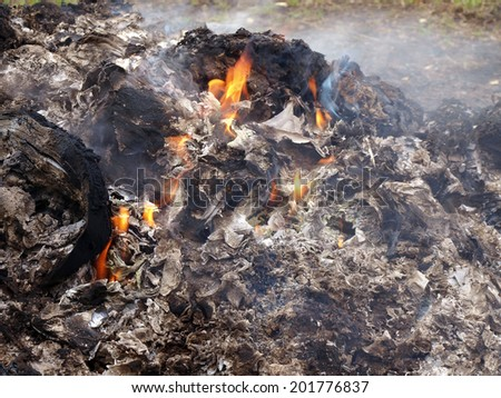 Burning stack of waste near country farm garden - stock photo