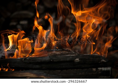 Burning wood in fire close-up. - stock photo