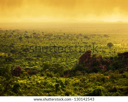 Bush landscape in Kenya, Africa. Tsavo West National Park. Sunset sky - stock photo