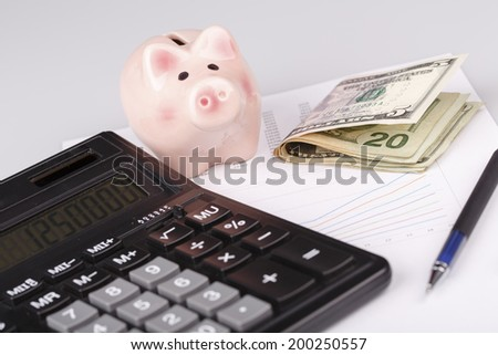 Business Charts with calculator, dollars money, piggy box / money box and pen on white background - stock photo