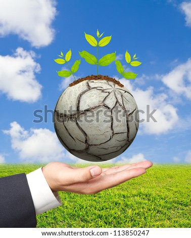 Business man hand holding Green tree on a barren world.Symbol of spring and ecology concept - stock photo