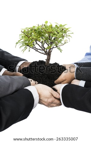 Business people holding earth and small tree isolated on white - stock photo