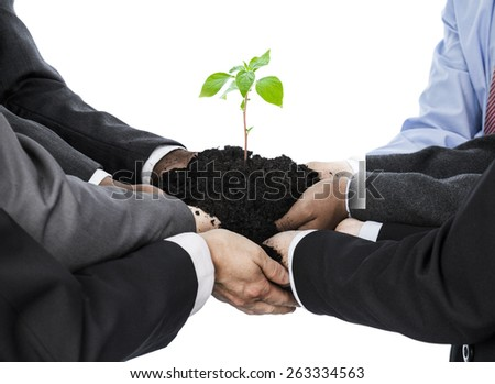 Business people holding earth with seedling isolated on white - stock photo