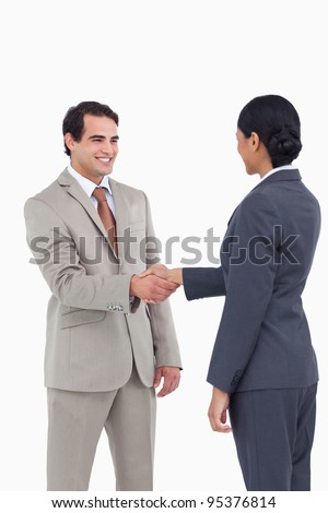 Business people shaking hands against a white background - stock photo