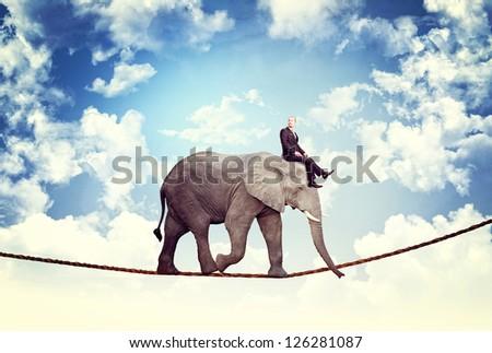 businessman and elephant walk on rope - stock photo