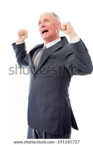 Businessman celebrating success - stock photo