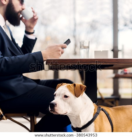 Businessman checking email and drinking coffee while his dog is looking aside. - stock photo