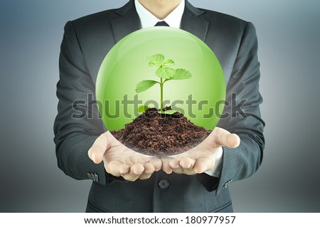 Businessman holding green sapling with soil inside the sphere - sustainable development & conservation concept - stock photo