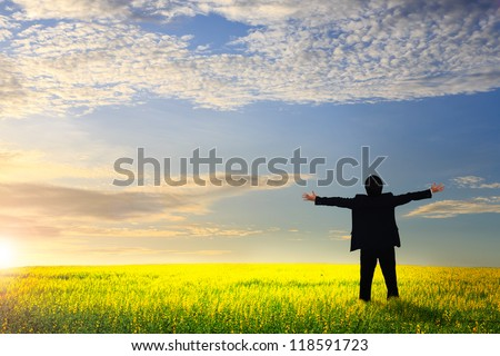 Businessman standing on a meadow with raised hands and looking to a horizon - stock photo