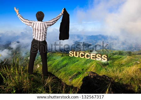 Businessman standing on a peak at mountain, Success in business concept - stock photo