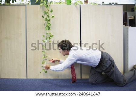 Businessman Trimming Plant in Office - stock photo