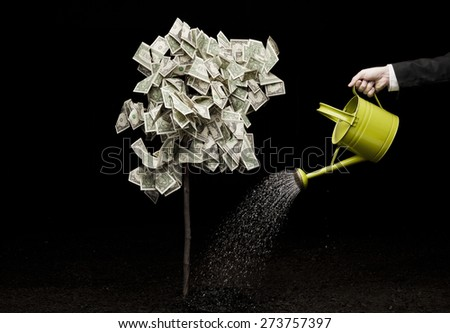 Businessman watering money tree Business and investment concepts - stock photo
