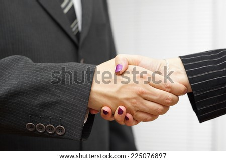 businesswoman and businessman shakeing hands. Successful business concept - stock photo