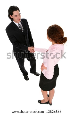 Businesswoman and businessman shaking hands - stock photo