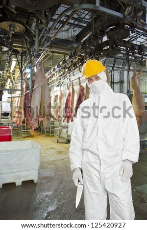 Butcher, wearing hygienic clothing, including a white suit, mouth piece or mask, and hard hat standing on front of the carcasses of slaughtered pigs, carrying a knife in a large meat processing plant - stock photo