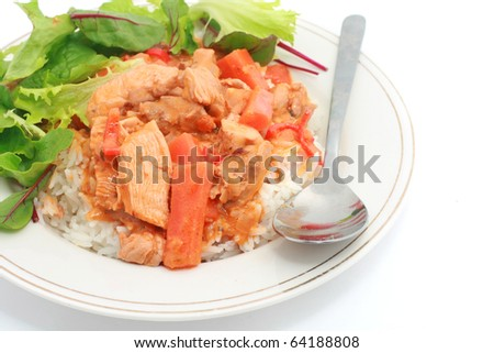 Butter Curry Chicken with Rice and Salad - stock photo