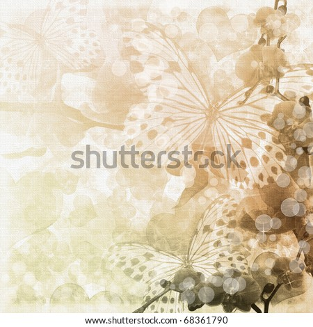 Butterflies and orchids flowers beige background ( 1 of set) - stock photo
