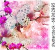 Butterflies and orchids flowers  pink background  with lace ( 1 of set) - stock photo