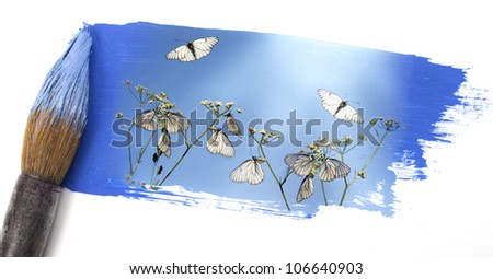 Butterflies fly, butterflies. - stock photo