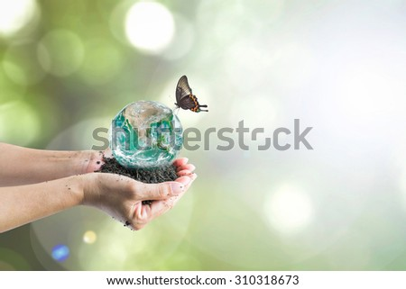 Butterfly drinking water from green big globe on rich humus soil in human hands with blurred greenery bokeh background of tree leaves (focus on soil): Elements of this image furnished by NASA - stock photo