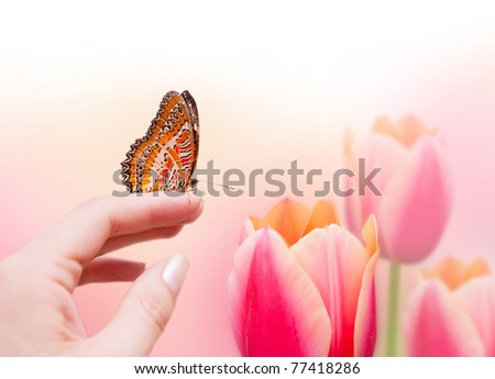 Butterfly on female hand and beautiful pink tulips - stock photo