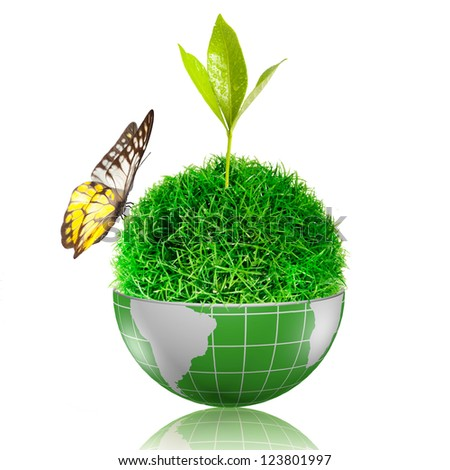 Butterfly on the ball of grass inside the globe with plant growing - stock photo