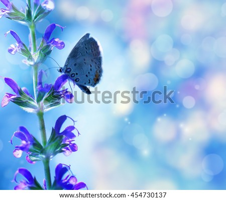 Butterfly on the flower over blue background - stock photo