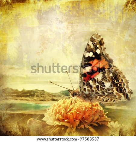 Butterfly on the flower overlaid with grunge texture - stock photo