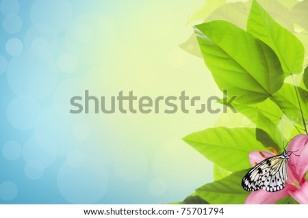 Butterfly resting on a leaf - stock photo