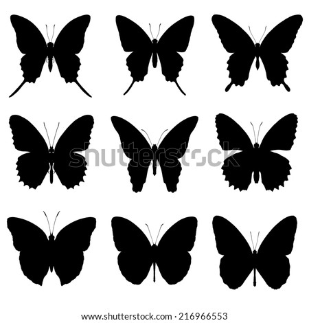 Butterfly silhouette set, butterfly icon collection, isolated on white background. - stock photo