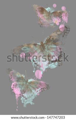 Butterfly Splatter - stock photo