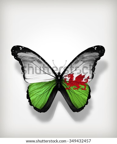 Butterfly Wales flag on paper as card - stock photo