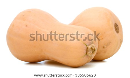 butternut squash on white background  - stock photo