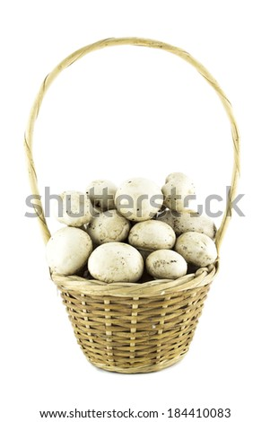 button white mushrooms in basket, champignons. - stock photo