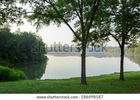 By the side of the lake on a summer morning, view through trees - stock photo
