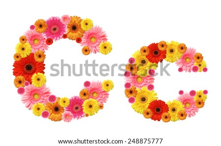 c, flower alphabet - stock photo