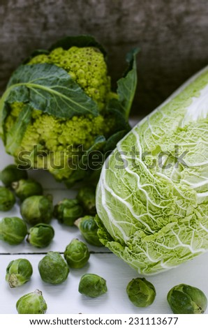 Cabbage variety:  broccoli, chinese cabbage,  brussel sprouts - stock photo