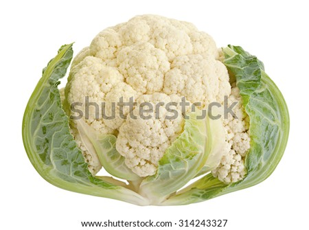 Cabbage vegetable closeup isolated on white background - stock photo