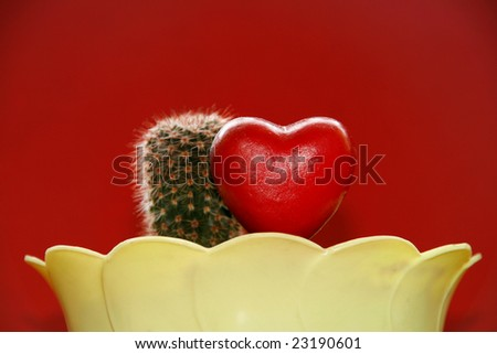 Cactus and decorative heart in a plant pot against red background. Valentine's day. - stock photo